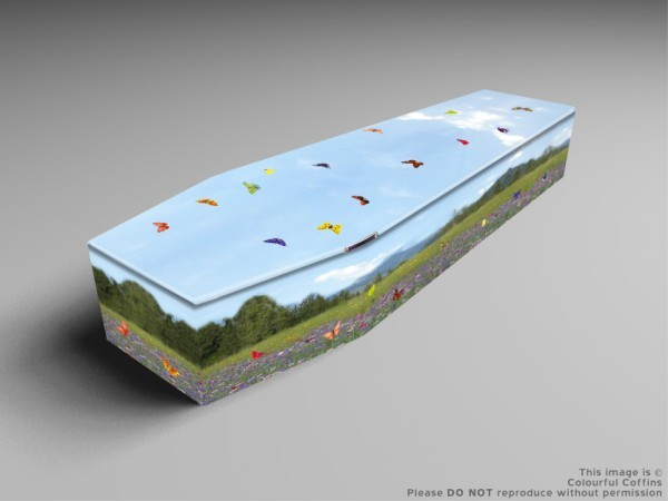 Summer Meadow, Innocence, forest trails coffins