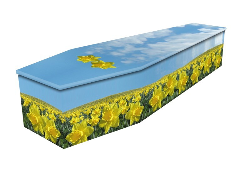 Field Of Daffodils Cardboard coffin