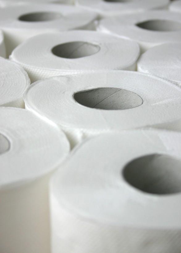 320 sheet toilet rolls